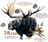 Moose with Info